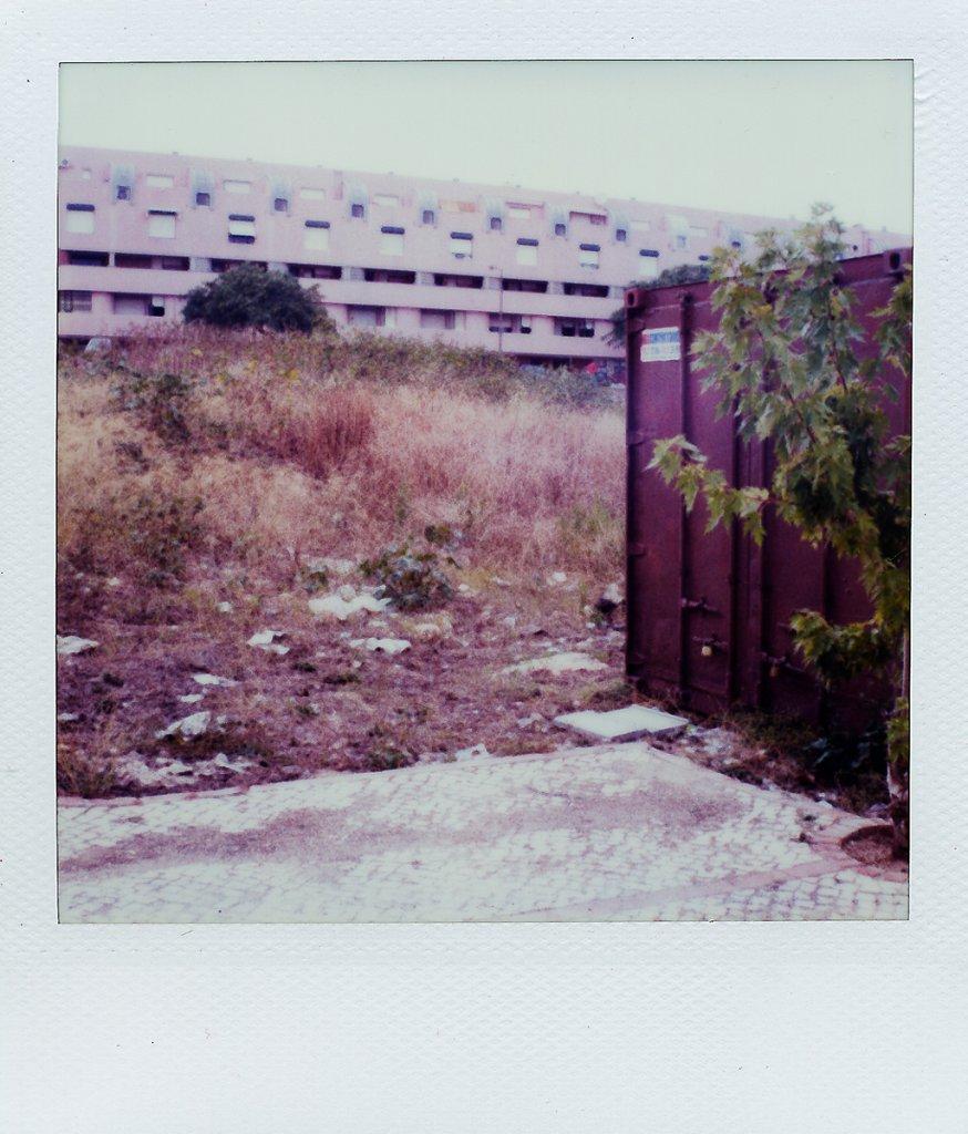 untitled-23.jpg